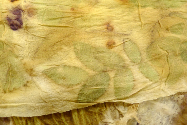 евгения боброва