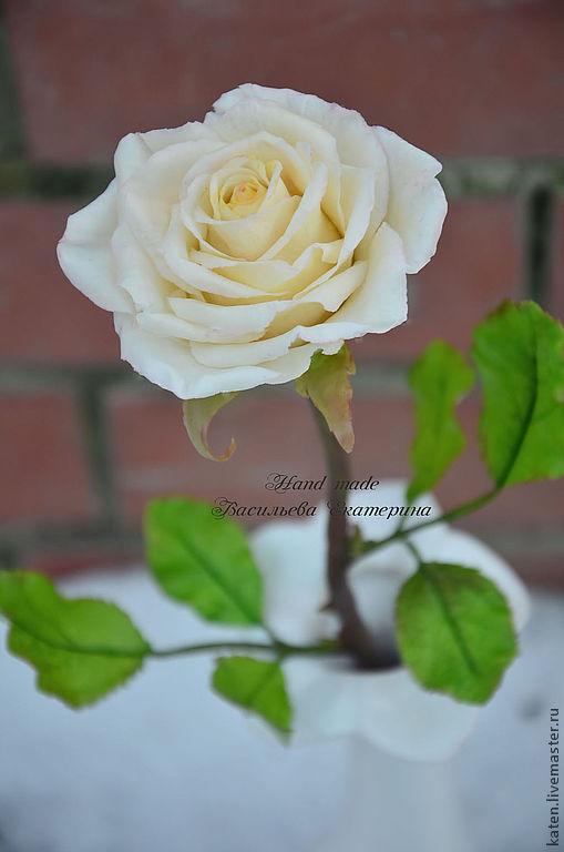 конфетка, роза, цветы, полимерная глина, праздничная акция