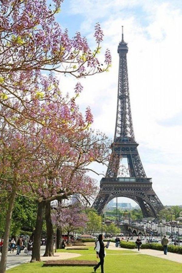 Весенний Париж, дыхание теплого ветра, фото № 23