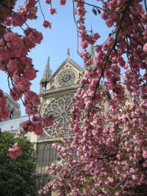 Весенний Париж, дыхание теплого ветра, фото № 21