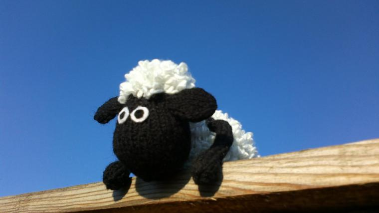 барашек, барашек шон, овечка, вязаная овечка, мультик, герой мультфильма, вязаная игрушка, игрушка, игрушка овечка