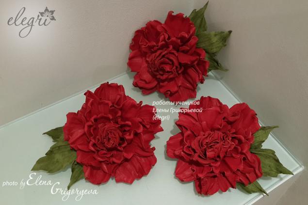 купить розу, роза, обучение роза