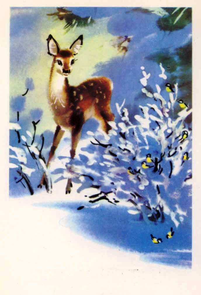 открытки со зверушками