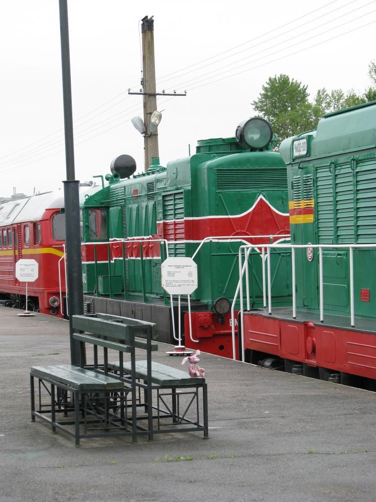 Путешествие зайца из Москвы в Санкт-Петербург, фото № 11