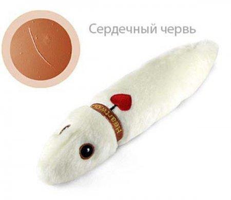 Незаразные игрушки giantmicrobes