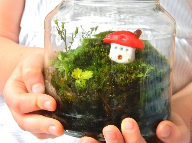Как сохранить мох для поделок