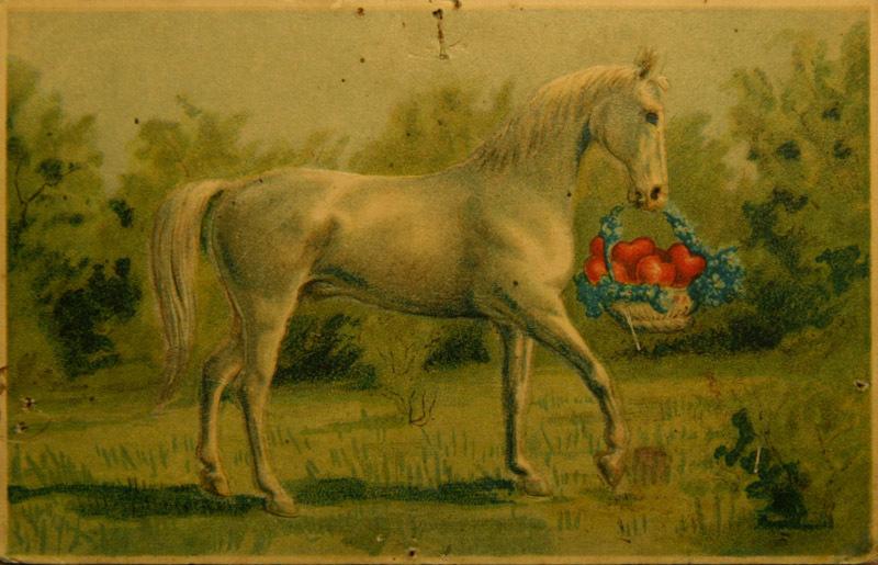 Лошади на открытках