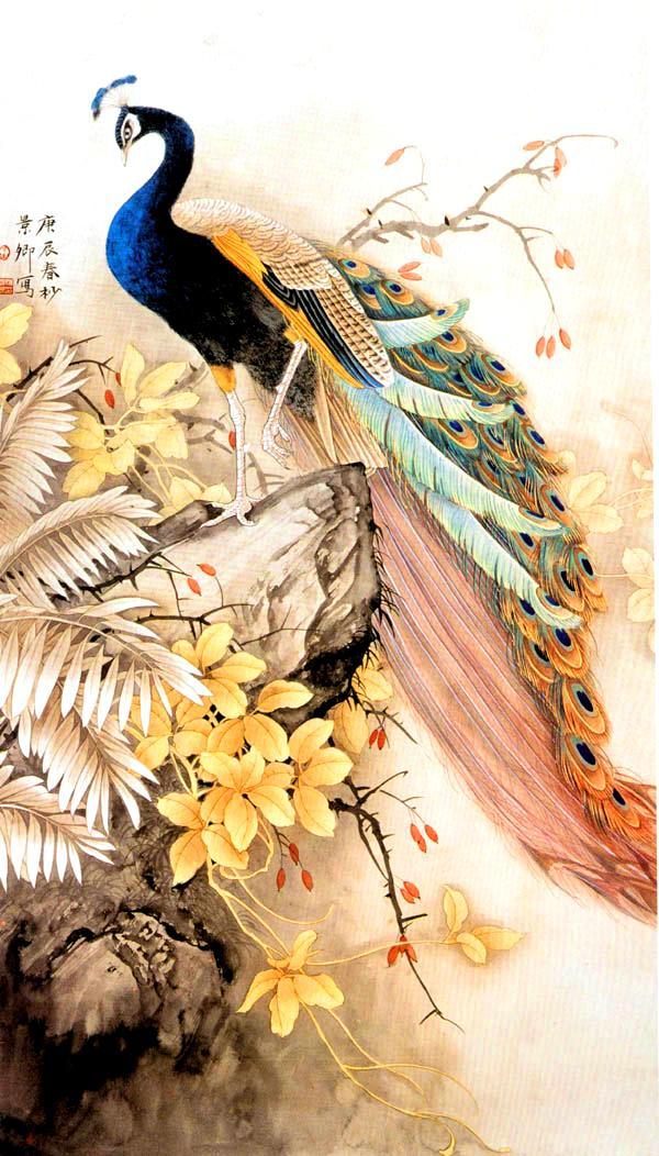 Картинки с райскими птицами, поздравления днем