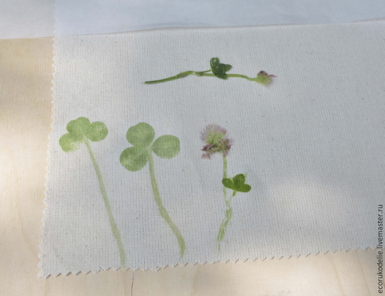 How to Make Plant Prints on Fabric, фото № 6