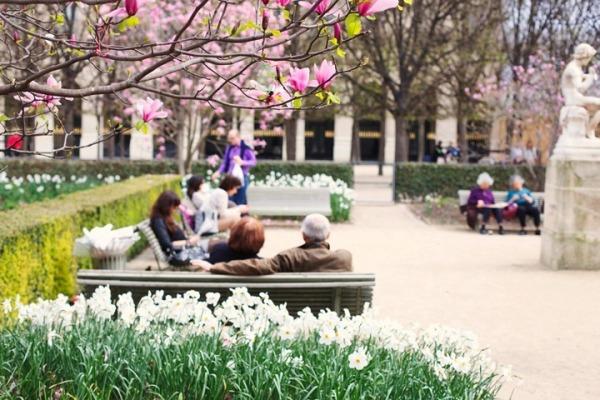 Весенний Париж, дыхание теплого ветра, фото № 14