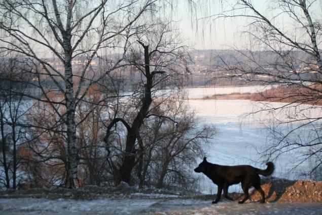 Русские края, фото № 17