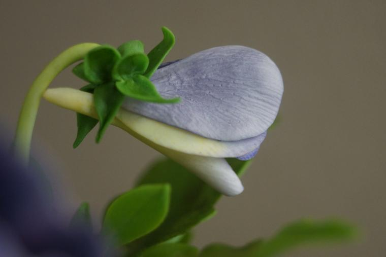 керамическая флористика