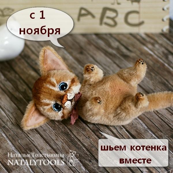 котенок, мастер-класс, обучение