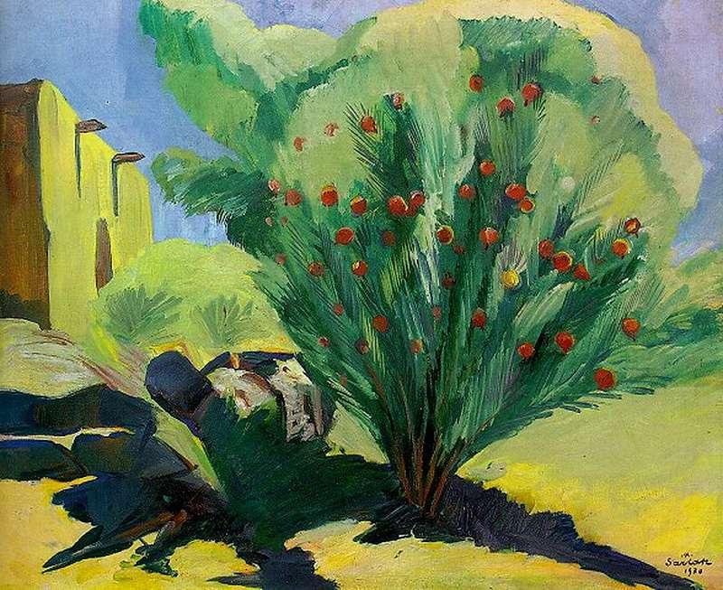 1930 Гранатовое дерево. МС - Сарьян Мартирос Сергеевич