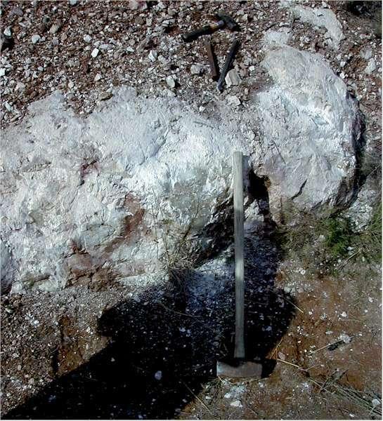 Обыкновенные опалы: Потч