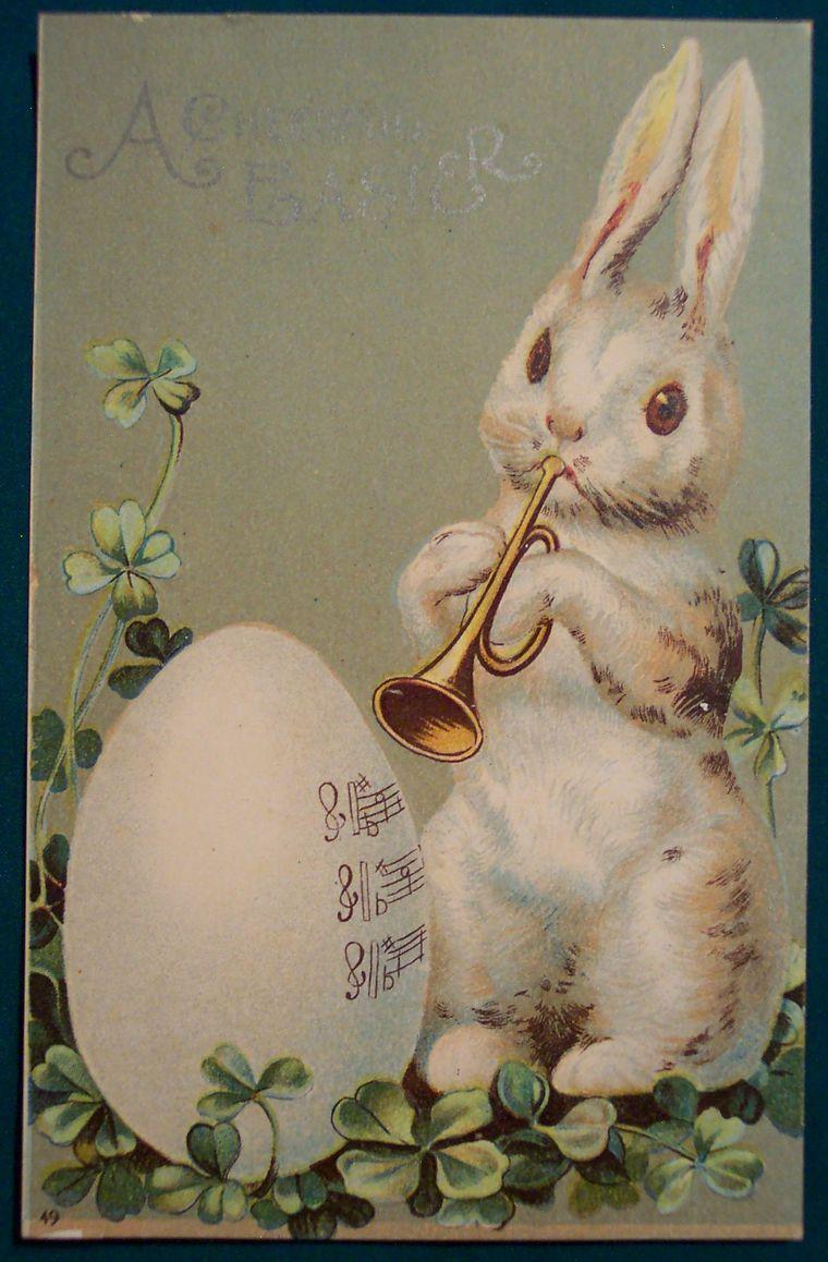Флеш открытку, поздравительная открытка кролика