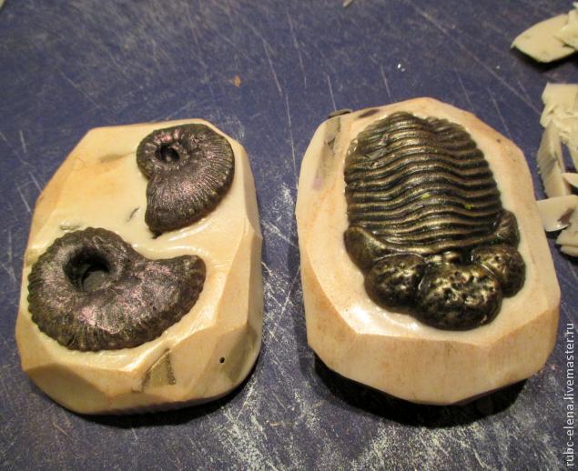 окаменелости