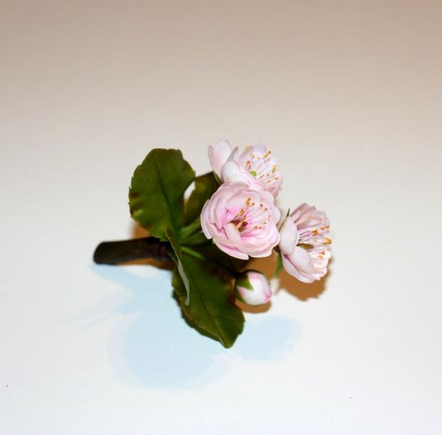 Цветы-это состояние души!, фото № 6