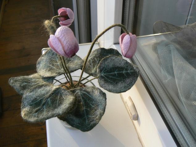 войлок, цветы из шерсти, шелковые коконы, домашний цветок
