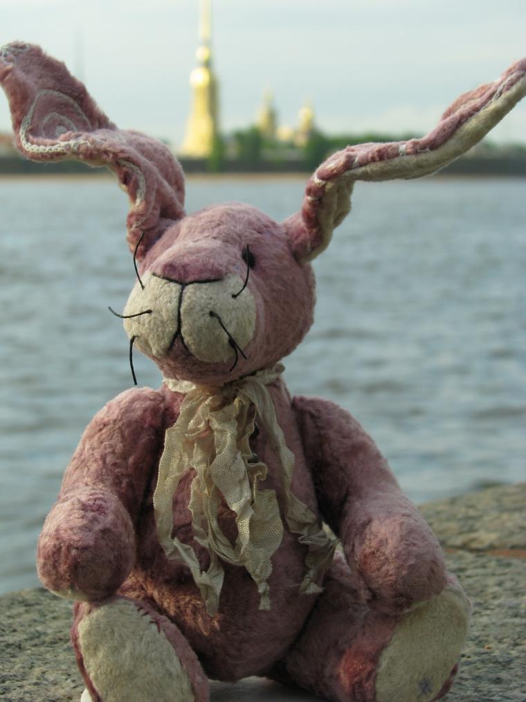 Путешествие зайца из Москвы в Санкт-Петербург, фото № 6