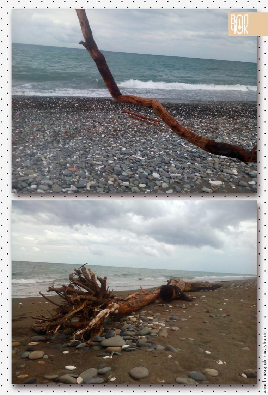 driftwood, море