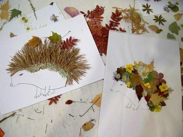 Как сделать красивый гербарий в садик - OldKurgan.Ru