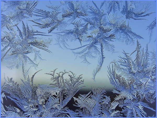 Морозной зимой, фото № 11