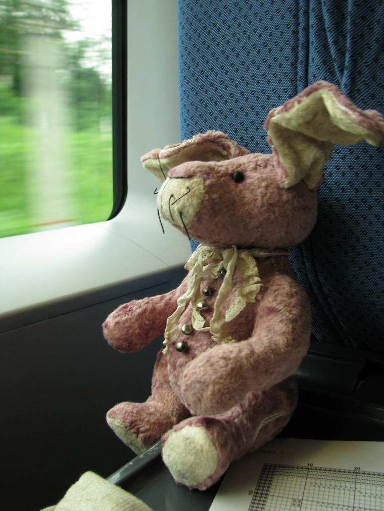 Путешествие зайца из Москвы в Санкт-Петербург, фото № 3