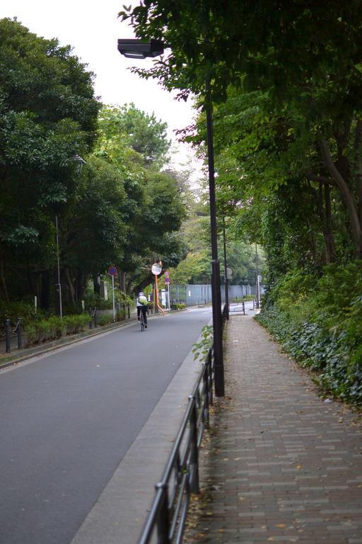 Дикий забег по Токио за 7 дней. День пятый. Зоопарк Уэно и детские магазины., фото № 2