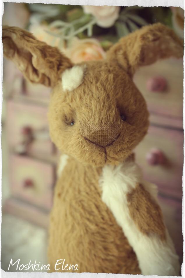 тедди кролик