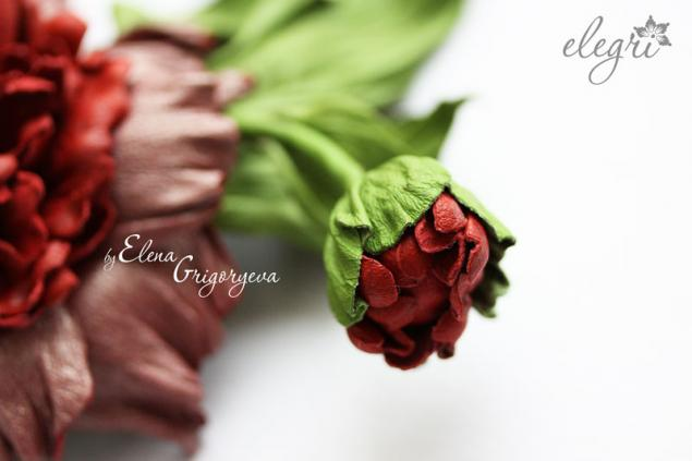 обучение кожа, заказать розу