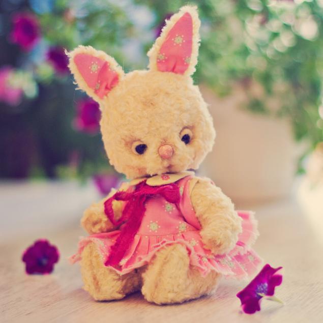 bunny, розовый