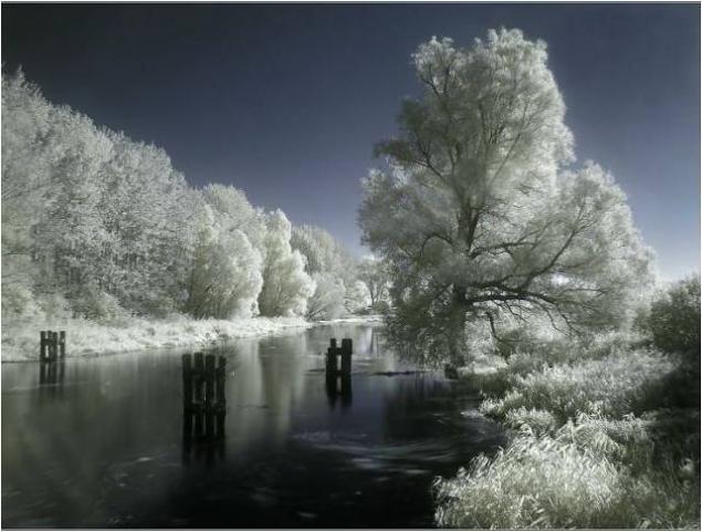 Морозной зимой, фото № 5