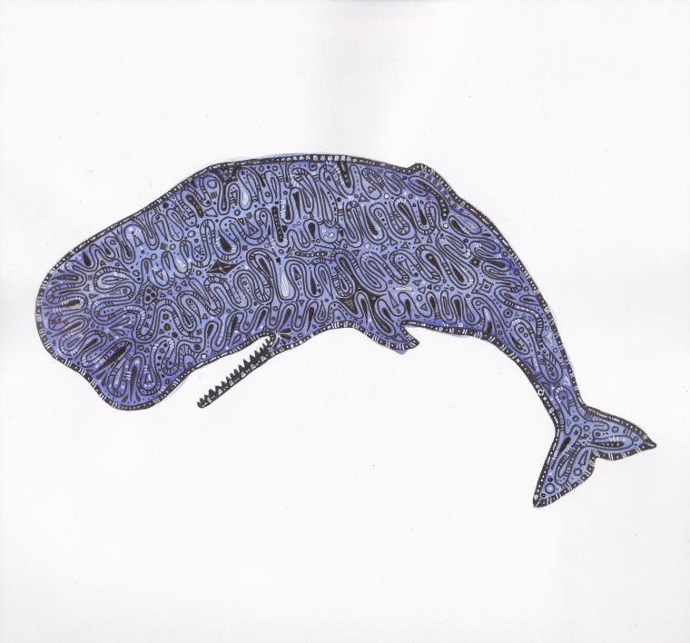 кит, хаяо миядзаки