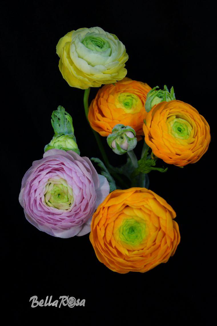 полимерная флористика, обучение цветоделию