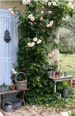 Я в саду! Заходите!, фото № 71