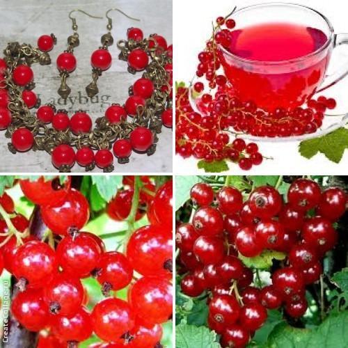 красный, красный браслет, смородина, красная смородина, комплект украшений