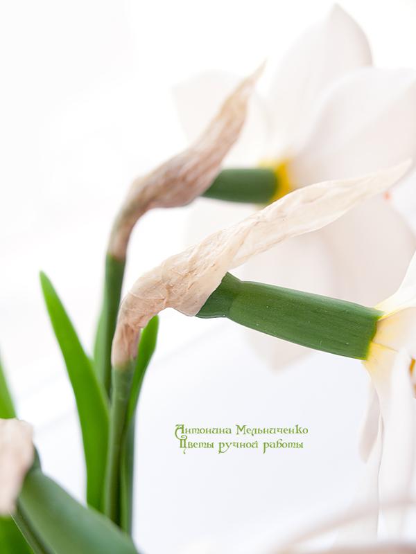 лепка, лепка цветов, лепка из полимерной глины, керамическая флористика, полимерная флористика, нарциссы
