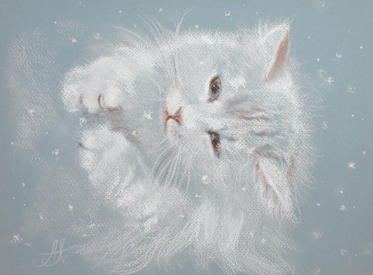 картины, теплые картины, кот, день святого валентина