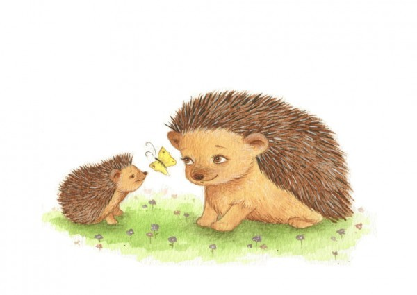 hoggy and mummy and butterfly