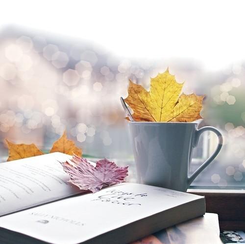 осень, письма, акция, осенние листья, осенний, новости