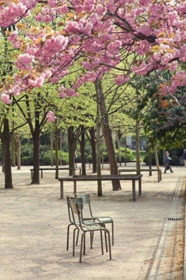 Весенний Париж, дыхание теплого ветра, фото № 19