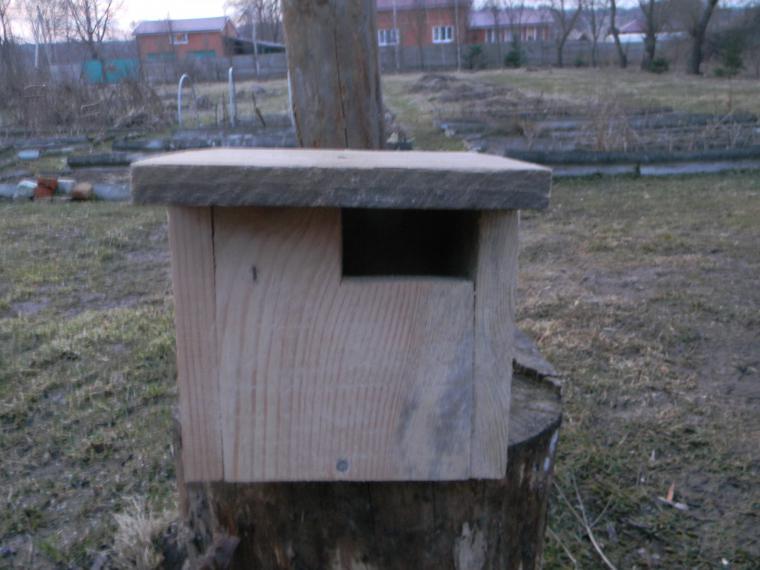 Каждой птице свой дом, фото № 3