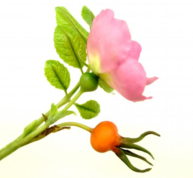 школа лепки цветов