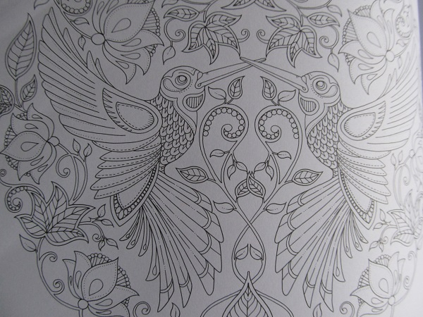 джоанна басфорд, doodling
