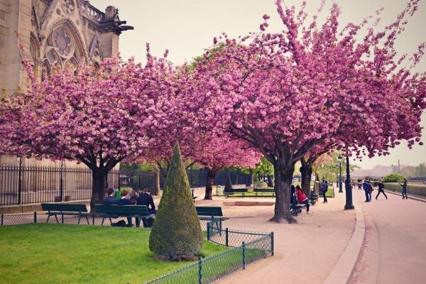 Весенний Париж, дыхание теплого ветра, фото № 5