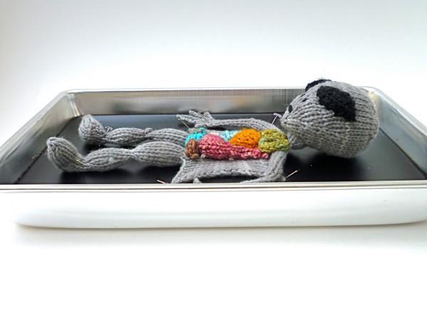 А как Вам такое)? Проект aKNITomy: препарирование животных на спицах, фото № 7
