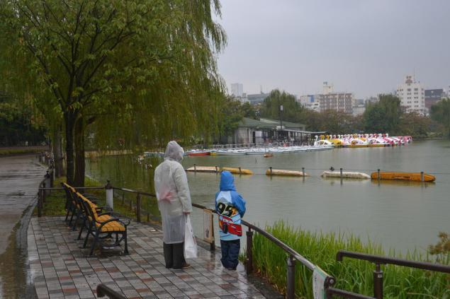Дикий забег по Токио за 7 дней. День пятый. Зоопарк Уэно и детские магазины., фото № 55