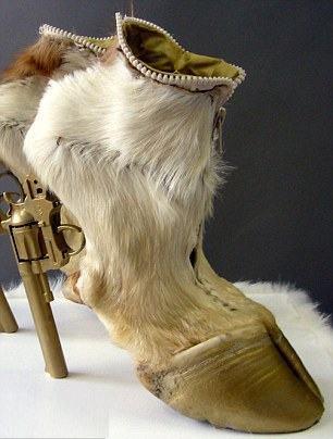 животные, оригинальная обувь, сапожки - копыта