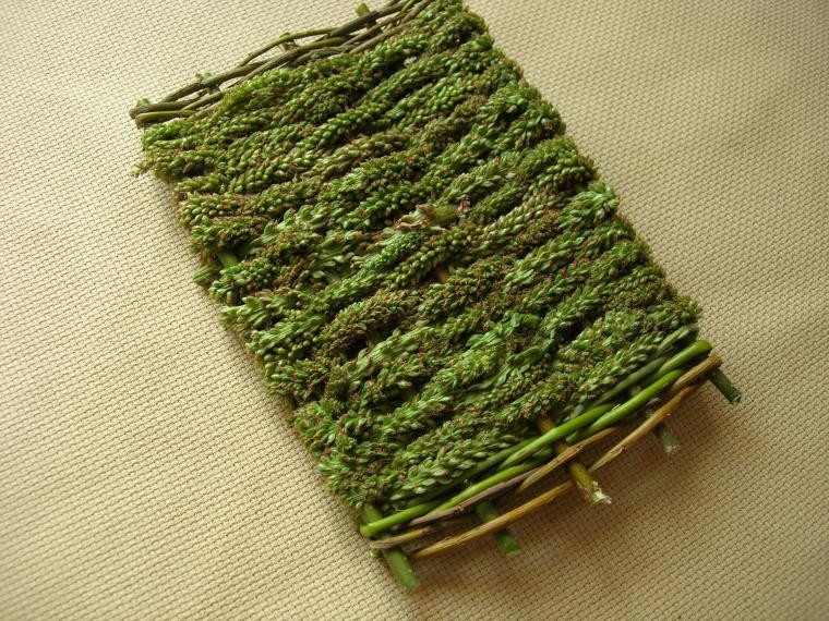 Плетение из трав
